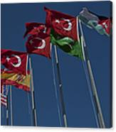 The Flags Of The Participating Nations Canvas Print