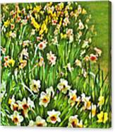The Flower Bed Canvas Print