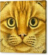 The French Orange Cat Canvas Print