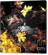 The Golden Leaves Canvas Print
