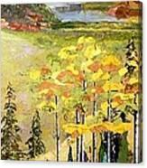 The Gore Range Canvas Print