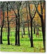 The Grove Canvas Print