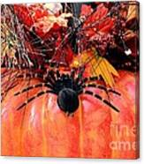 The Harvest Spider Canvas Print