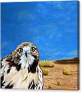 The Hawk Canvas Print