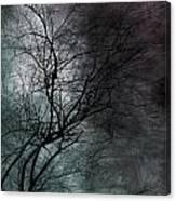 The Haze Of The Moon Canvas Print