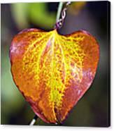 The Heart Of Autumn Canvas Print