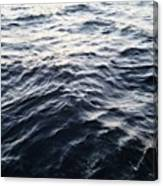 The Hudson Canvas Print