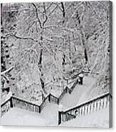 The Hundred Steps In The Snow Canvas Print
