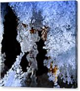 The Ice Cave Canvas Print