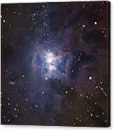 The Iris Nebula Canvas Print
