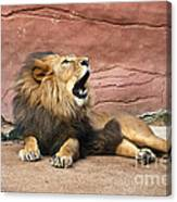 The King Speaks Canvas Print