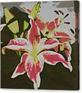 The Lily 1 Canvas Print