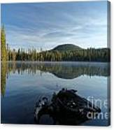 The Lone Log Canvas Print
