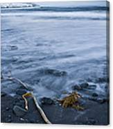The Lovely Seascape Canvas Print