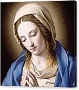 The Madonna Praying Canvas Print