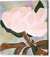 The Magnolia Canvas Print