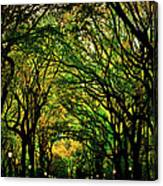 The Mall In Fall Canvas Print