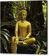 The Mercy Of Buddha Canvas Print