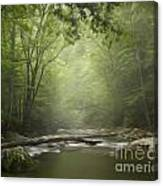 The Middle Prong River In Fog Canvas Print