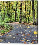 The Mount Vernon Trail. Canvas Print
