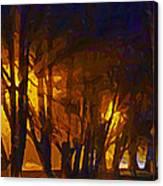 The Night Lights Canvas Print