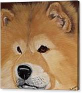 The Noble Chow Canvas Print