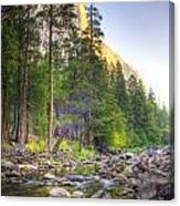 The Now Creek Canvas Print