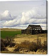 The Old Barn In The Meadow Canvas Print