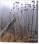 The Old Fence - Blue Misty Morning Canvas Print