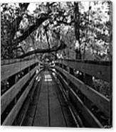 The Old Hillsborough Bridge Canvas Print