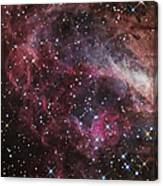 The Omega Nebula Canvas Print