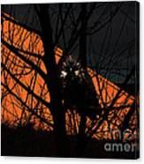The Owl And The Old Ranch Canvas Print