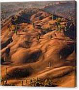 The Painted Dunes Canvas Print