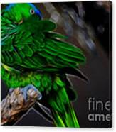 The Parrot Fractal Canvas Print