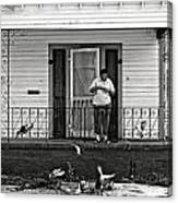 The Pigeon Lady - Black And White Canvas Print