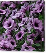 The Purple Sea Canvas Print