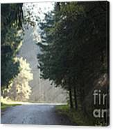 The Road Out Of The Conservation Area Canvas Print