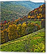 The Road To Glady Wv Painted Canvas Print