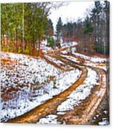 The Road To Spring Canvas Print
