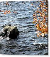 The Rockness Monster Canvas Print