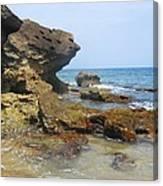 The Rocks At Rincon Canvas Print