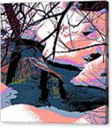 The Shades Of Winter Canvas Print