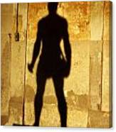 The Shadow Of The Statue Canvas Print