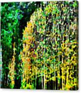 The Speckled Trees Canvas Print