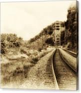 The Tracks Of My Tears Canvas Print