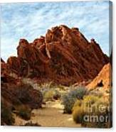 The Trail Through The Valley Canvas Print
