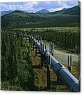 The Trans-alaska Pipeline Runs Canvas Print
