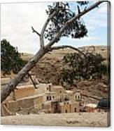The Tree In Desert Canvas Print