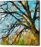 The Tree Of Many Colours  Canvas Print