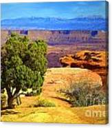 The Tree The Canyon And The Mountains Canvas Print